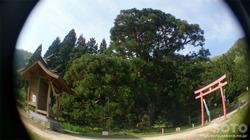 一本杉水源公園(4)
