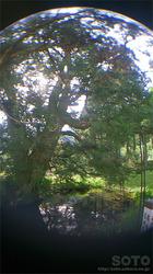 一本杉水源公園(6)