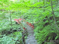 桜松公園(橋)