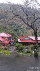 鎌倉温泉(3)