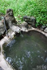 岩尾別温泉(4)