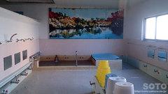 鶴の湯(浴室)