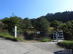 高森殿の杉(入口)