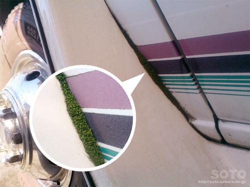 洗車(03)