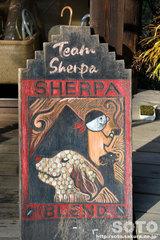 Team Sherpa(00)
