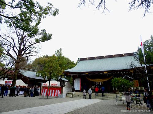 菊池神社(2020-1)