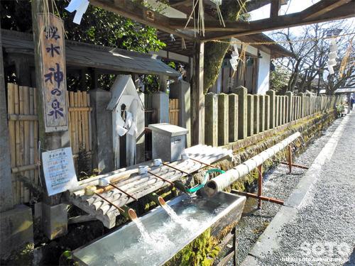 阿蘇神社(湧水)