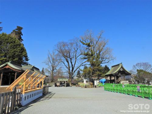 阿蘇神社(境内)
