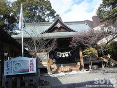 熊本大神宮(2)