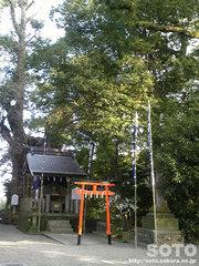 加藤神社(白鬚神社)