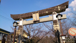 菊池神社(鳥居)