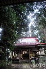 雪野八幡宮(2)