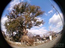 米嶋八幡宮(12)