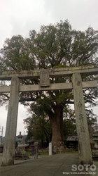 津江神社(1)