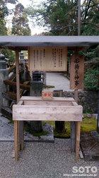 都農神社(3)