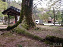 酒垂神社(3)