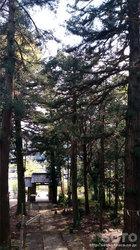 御湯神社(3)