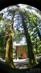 国造神社(2)
