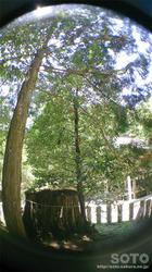 国造神社(4)