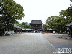 筥崎宮(1)