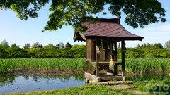 猿賀公園(胸肩神社3)