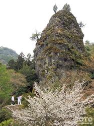 岩屋神社(馬の首根岩から権現岩を振り返る)