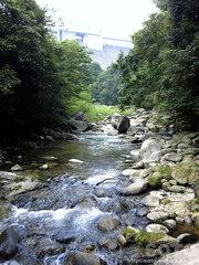 龍王神社(20110808_06)