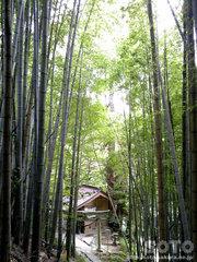 龍王神社(20110808_01)