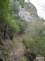 岩屋神社(修験道)