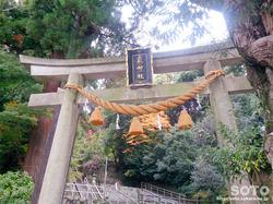 泉神社(1)