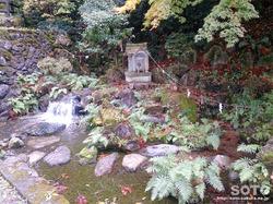 泉神社(2)