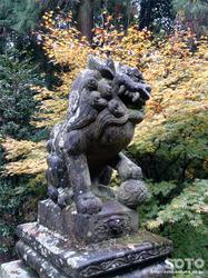 泉神社(5)