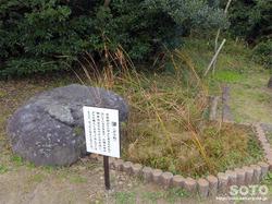白兎神社(ガマ)