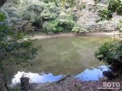 白兎神社(御身洗池)