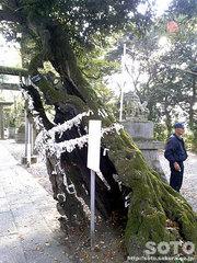 一言主神社(2)