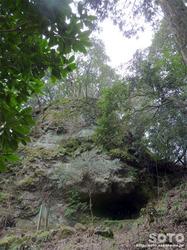 岩屋神社(鶯窟)