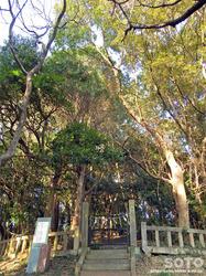 木の丸殿跡(1)
