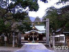 大麻比古神社(1)