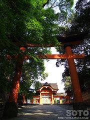 宇佐神宮(1)