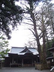 天岩戸神社(3)