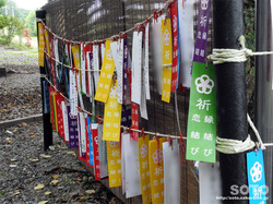 浦幌神社(11)