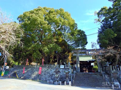 伊倉南八幡宮(02)