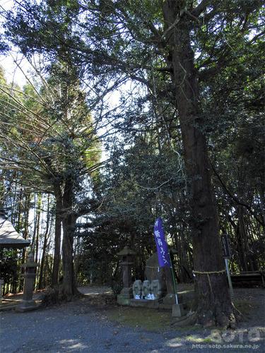 伊倉南八幡宮(05)