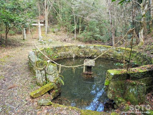 烏宿神社(御池)