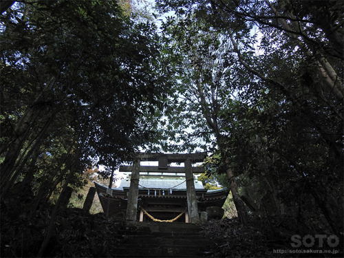 烏宿神社(08)