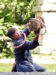 上川神社 秋の講社大祭(31)