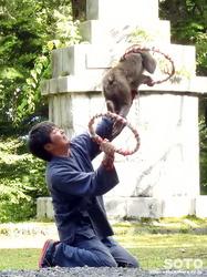 上川神社 秋の講社大祭(32)