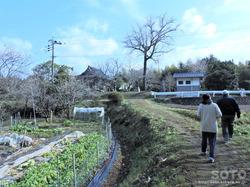 菅原神社(1)