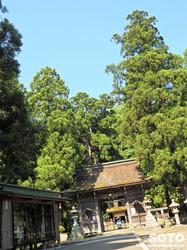 若狭姫神社(2)