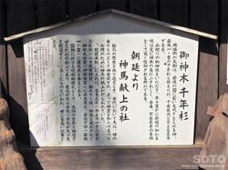 若狭姫神社(7)